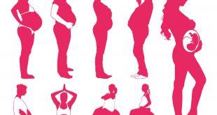 صورة فوائد الرياضة للحامل , اهمية الرياضة اثناء الحمل 1102 2 310x165