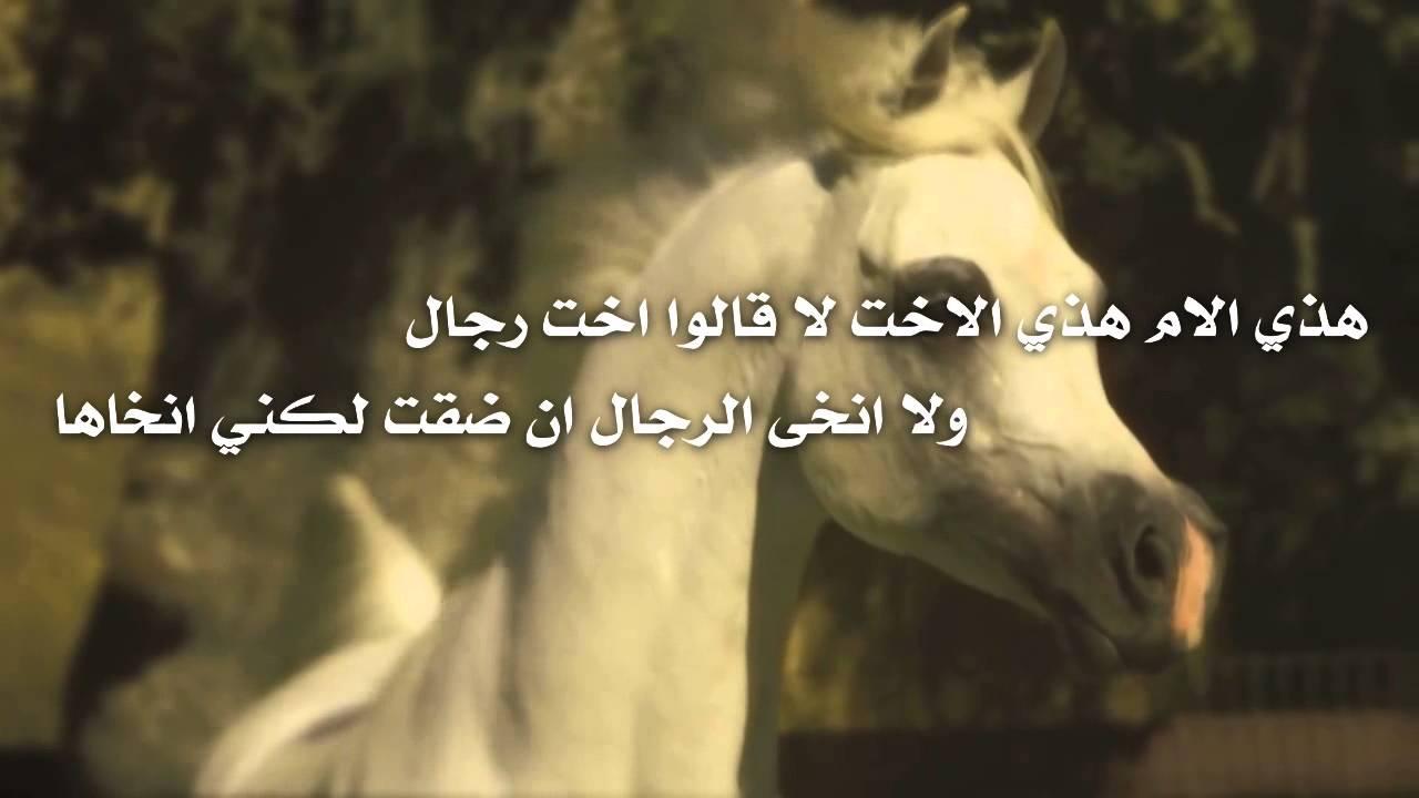 شعر مدح البنات الجميلات Findo