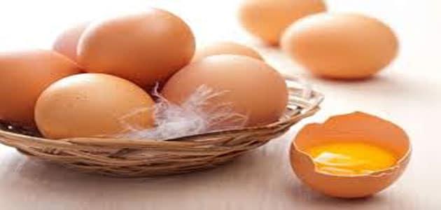 صورة تفسير رؤيا بيض الدجاج في المنام , اعرفي معني البيض في المنام