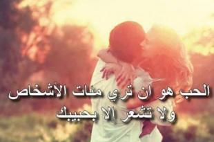 صورة كلام مثقفين عن الحب , عبارات تهزك عن معني الحب الحقيقي