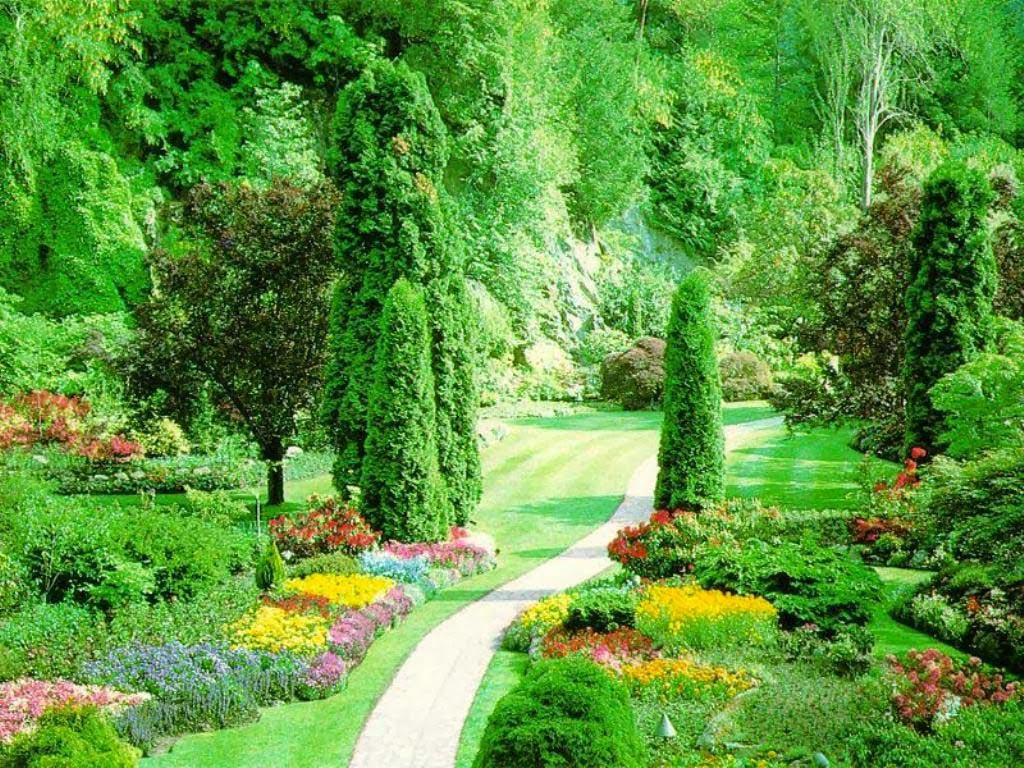 صورة تعبير عن جمال الطبيعة في فصل الربيع , حلول الربيع وروعة المنظر