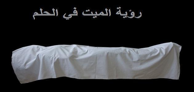 صورة ما تفسير رؤية الميت حي في المنام , ما قول العلماء فى شخص ميت فى حلمك