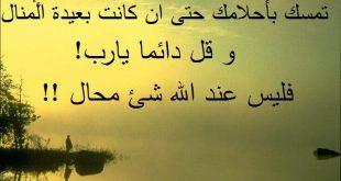 صورة صور اقوال واحكام , الحكمة في سطرين