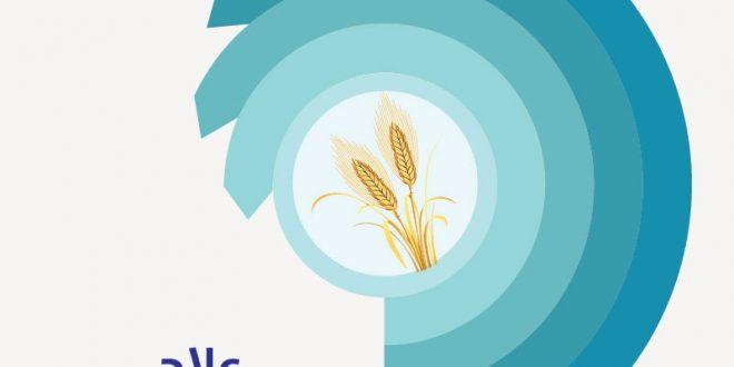 صورة علاج حساسية الجلوتين , ما هى حساسية الجلوتين وعلاجها