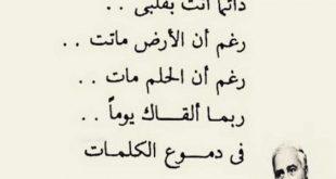 صورة قصيدة عن حرب اكتوبر لفاروق جويدة , اكتوبر في عيون الشعراء
