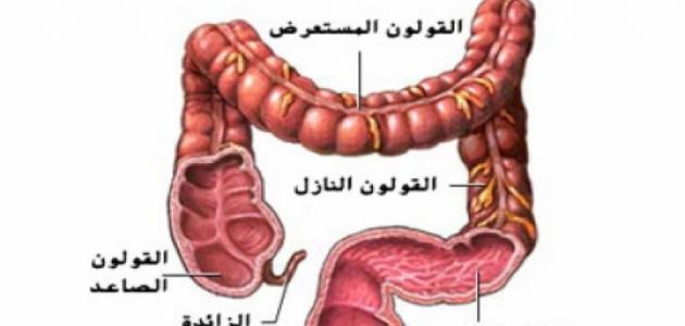 صورة علاج القولون والغازات , انتفاخات القولون حاجة صعبة