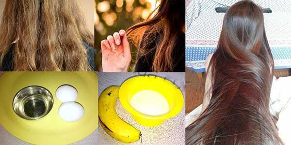 صورة معالجة الشعر التالف , عالجي تقصف شعرك وهيشانه بطرق طبيعية