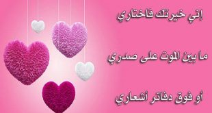 صورة احلى قصائد حب , اروع قصائد ممكن تقراها هى عن الحب