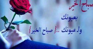 صورة رسالة صباح الخير للحبيب , حبيبك يستحق صباح كهذا رومنسى وساحر