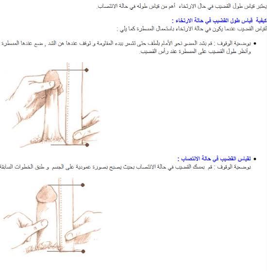 صورة طول الذكر الطبيعي بالصور , طول القضيب حسب العمر