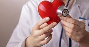 عدد دقات القلب , المعدل الطبيعي لدقات القلب وكيفية معرفتها