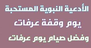 صورة دعاء اذا قلته يغفر الله لك سنة سابقة وسنة لاحقة , دعاء وقفة عرفات