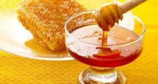 صورة كيفية معرفة العسل الاصلي ، كيفيه معرفه العسل الاصلي والمغشوش 393 1 310x165